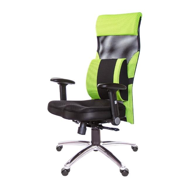 【GXG 吉加吉】高背美臀 電腦椅 摺疊扶手/大腰枕(TW-171 LUA1)