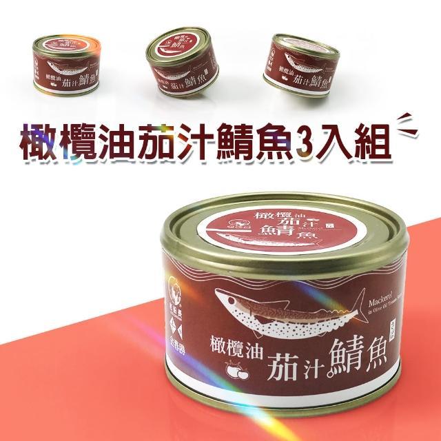 【老船長】橄欖油茄汁鯖魚230g-3入組(鯖魚罐頭)