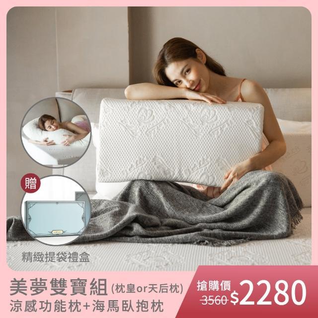 【1/3 A LIFE】護背好眠枕頭組-親水涼感記憶(涼感功能枕2選1 + 涼感坐靠墊組)