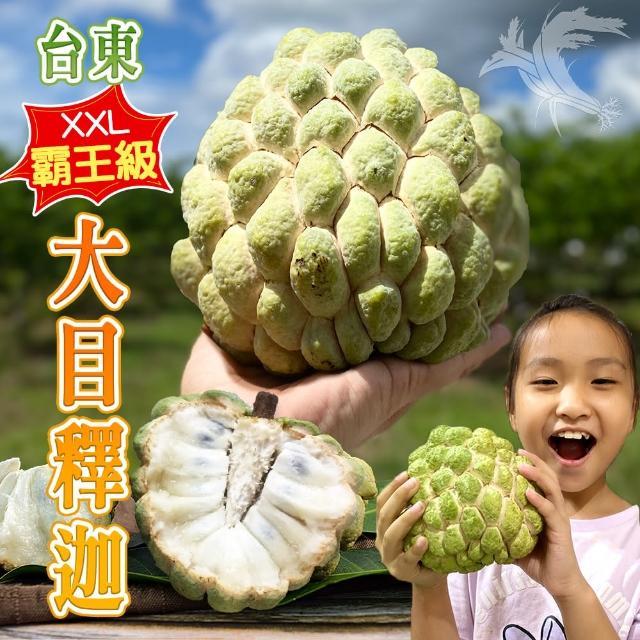 【產地直送】台東頂級XXL霸王級大目釋迦10斤8-9顆(共2箱)