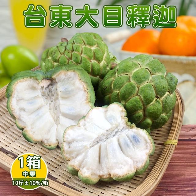 【產地直送】台東香甜好吃大目釋迦10斤12-13顆(x1箱)